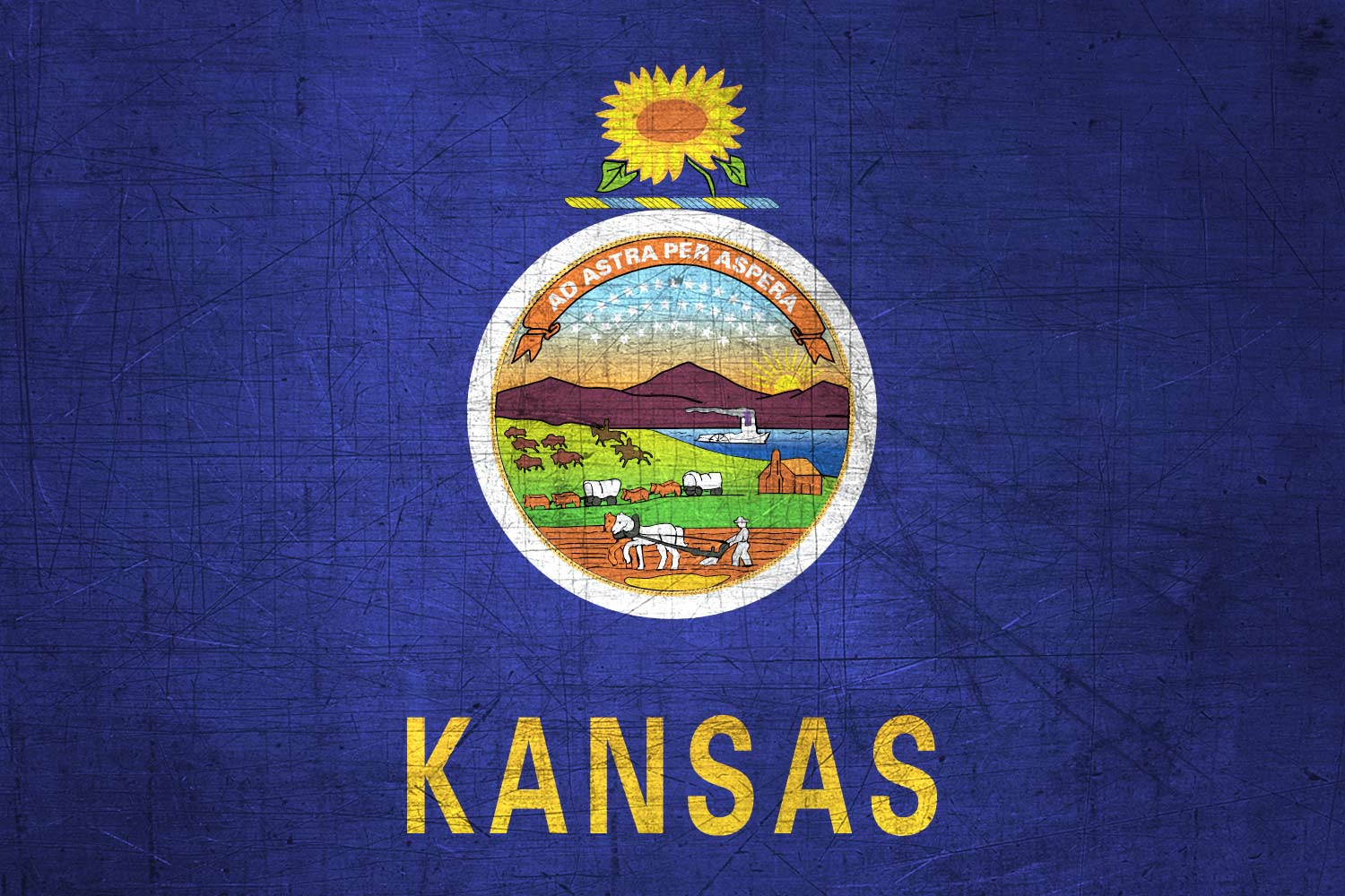 Kansas-Flag-US-State-Metal-XL.jpg