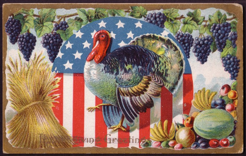 turkey-in-front-of-american-flag