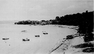 Mussel propagation cages in Lake Pepin at the site of the present day public boat ramp. August 30, 1919. Image courtesy of Minnesota Department of Natural Resources