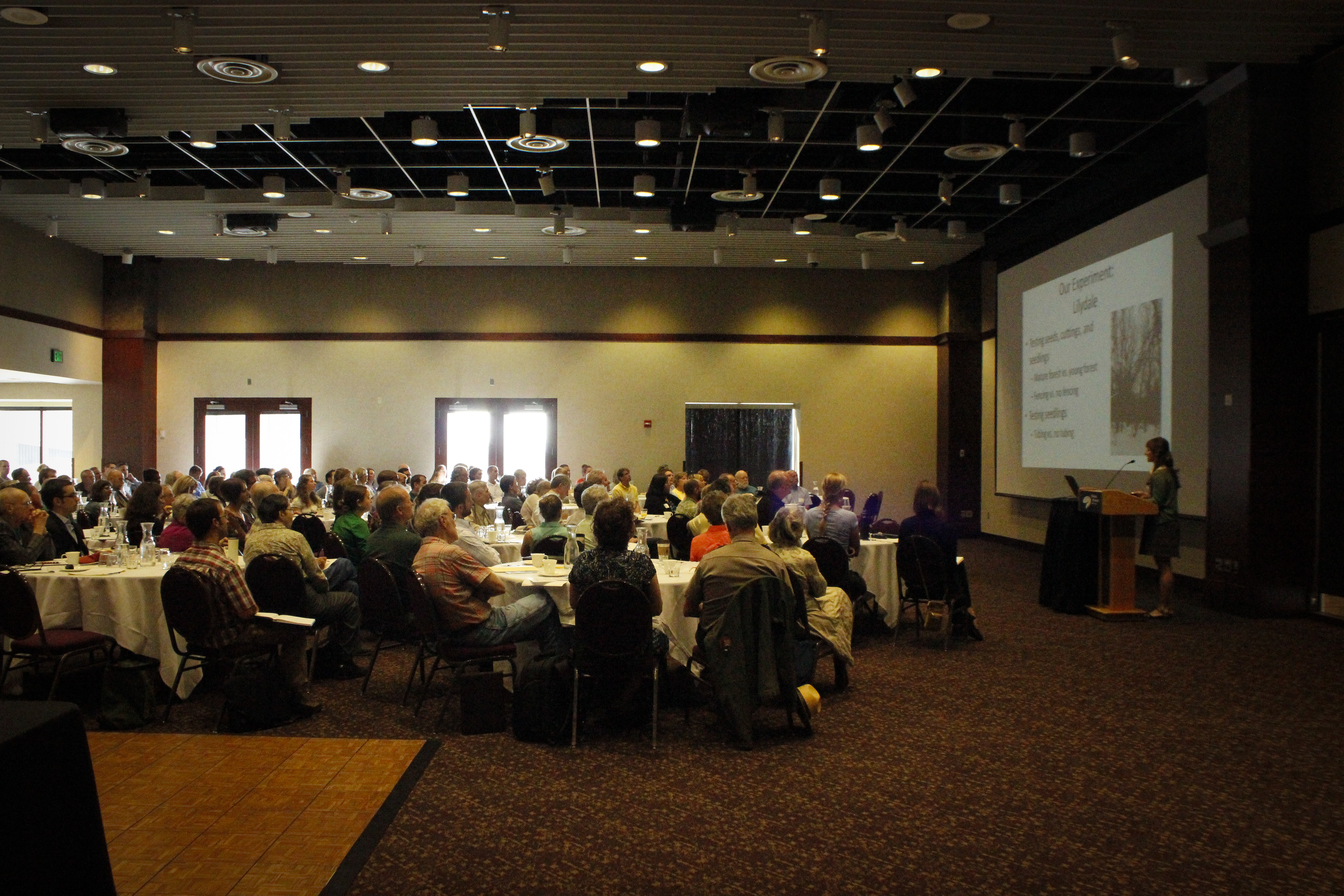 Maria DeLaundreau presents cottonwood research findings to the Mississippi River Forum audience. Photo by Melissa Buss, courtesy of the National Park Service.