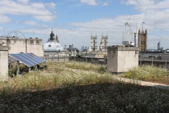 A solar panel on the roof of a Parisian building. Notre Dame is in the background.