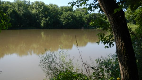 Why so much sand in the Lower Minnesota River? The Lower Minnesota River, from Carver Rapids to the confluence with the Mississippi, is a low-gradient, broad reach of the river.  If you wade into the brown water you may be surprised to find that the bottom is actually sandy... By Carrie E. Jennings