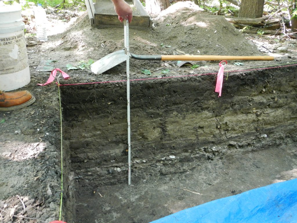 Excavation pit showing two layers with artifacts, at 10 and 20 inches deep. The white layer at 20 inches is mussel shells. Image by Carrie Jennings.