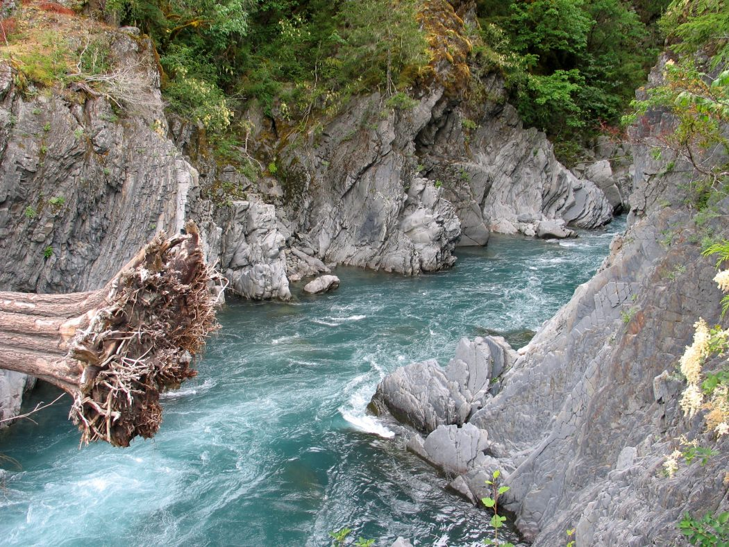 Elwha River at Goblin's Gate by Jeff Taylor