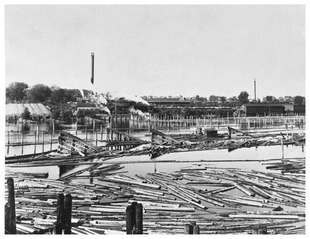 Bovey-DeLaittre sawmill and lumberyard, circa 1905, photographed by Elgin R. Shepard. Image used with permission of the Minnesota Historical Society.