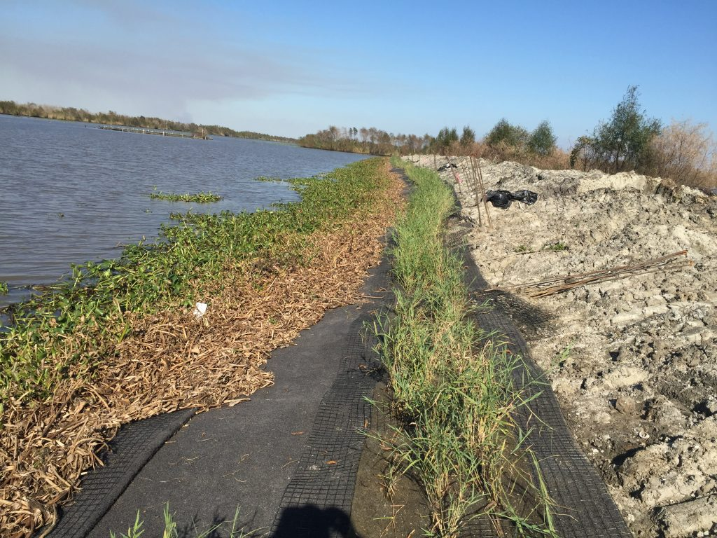 EcoShield in the midst of installation. Courtesy America's WETLAND Foundation.