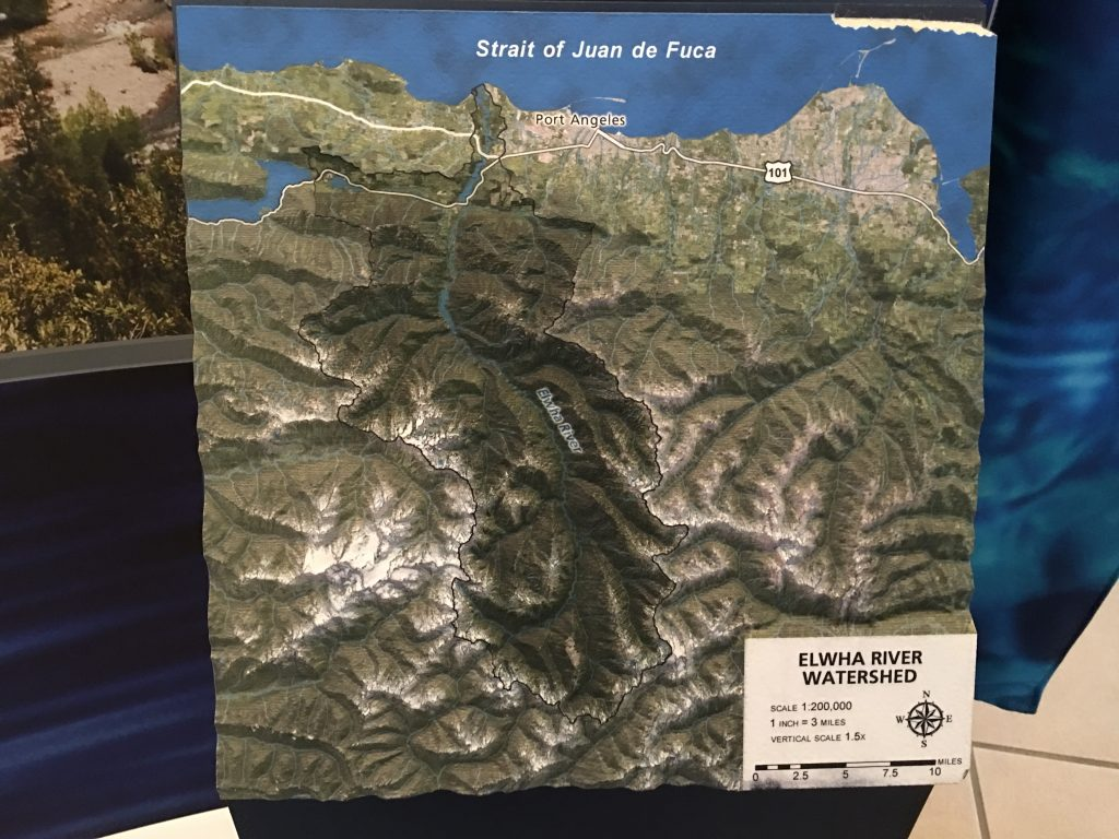 Tactile displays illustrating the Elwha River watershed are appealing to adults and children alike.