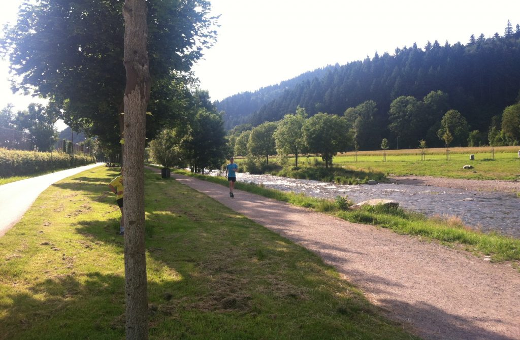 Express bike route, pedestrian path, Dreisam River and picnic grounds in Freiburg, Germany. Image courtesy of Kristen Anderson.