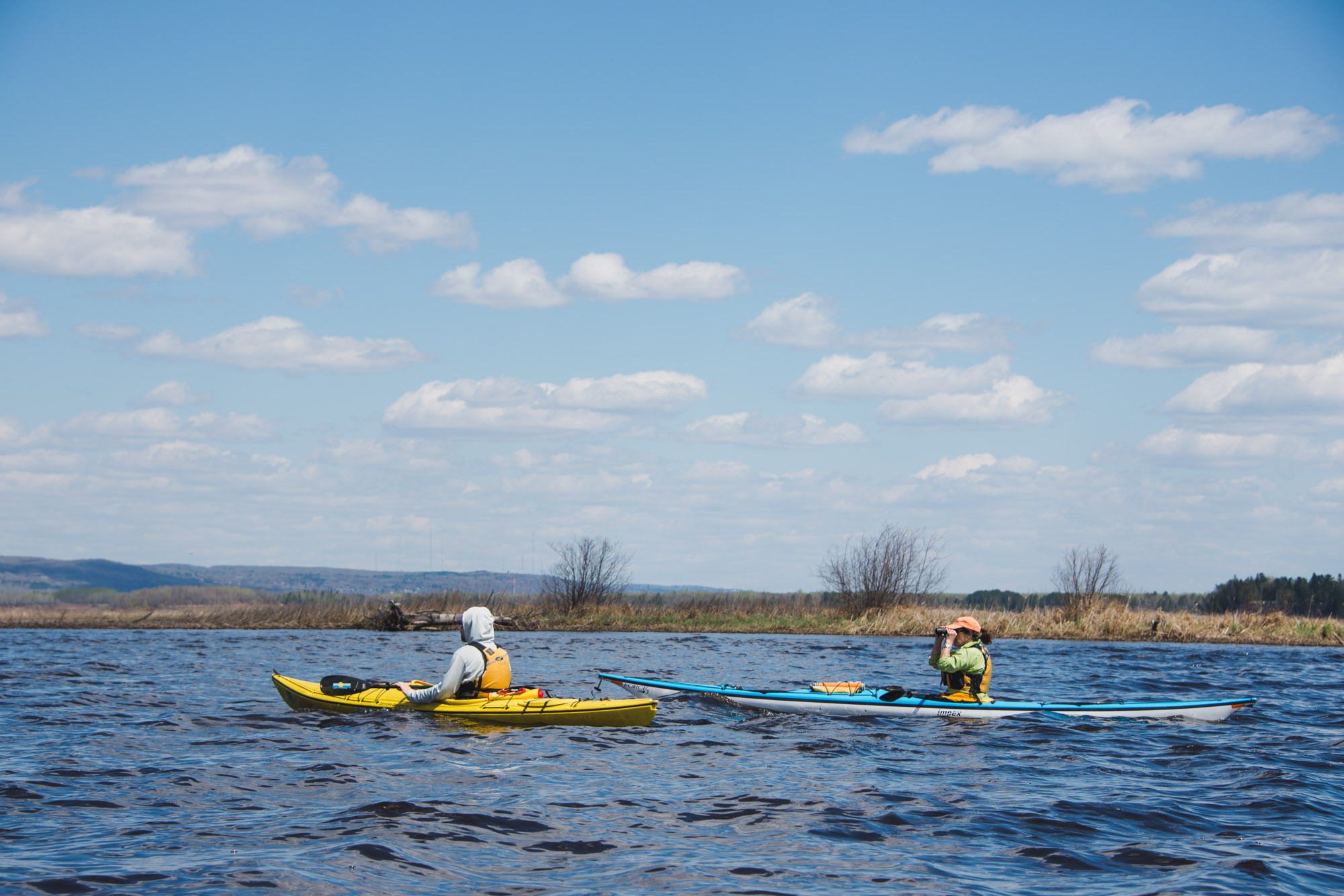 Kayakers view pelicans in the St. Louis River Estuary. Image courtesy of Alex Messenger Photography.