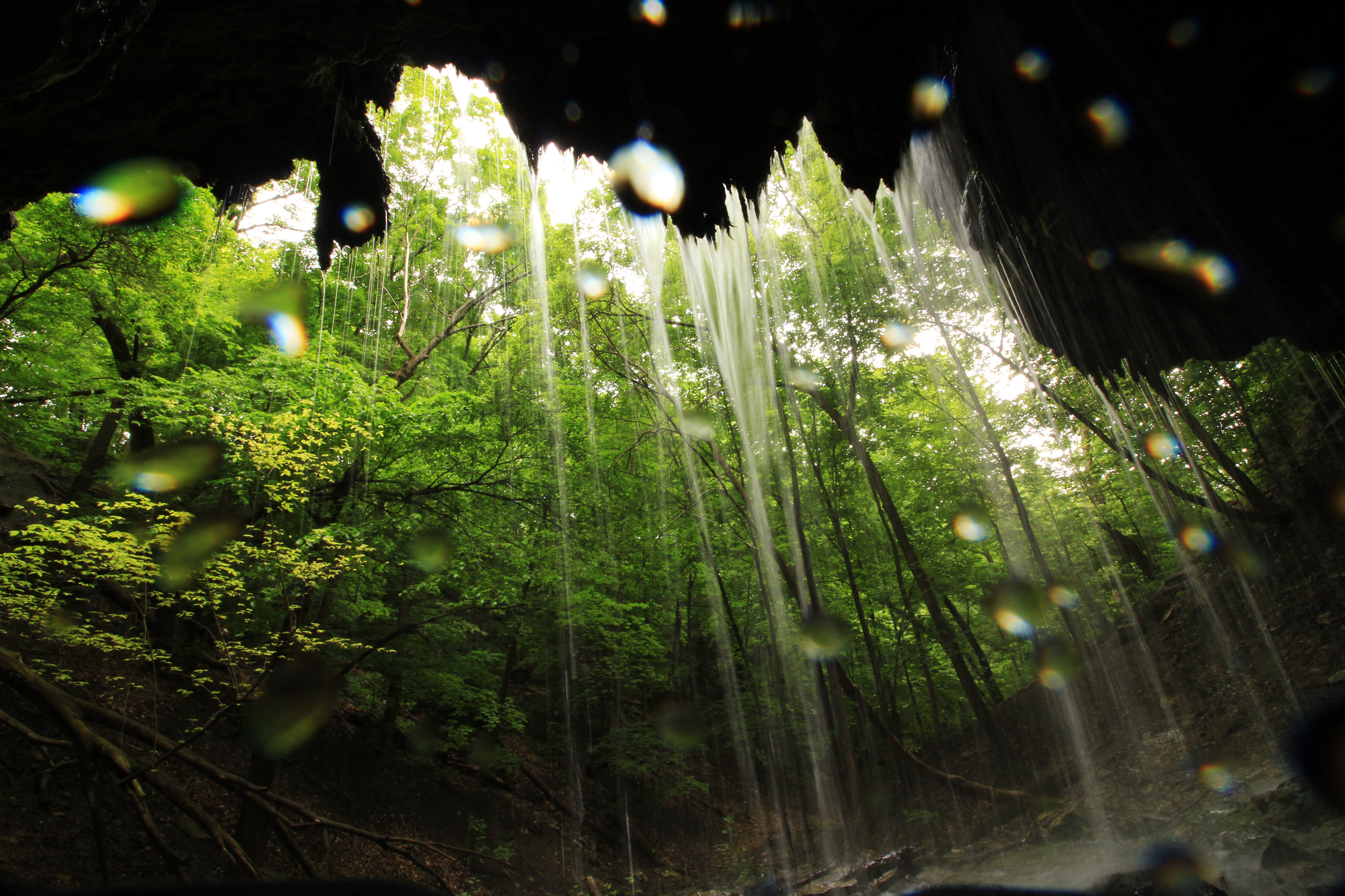Shadow Falls Park. This photo is taken under a waterfall, and water droplets are visible on the lens. Photographer Erin D. Carter.