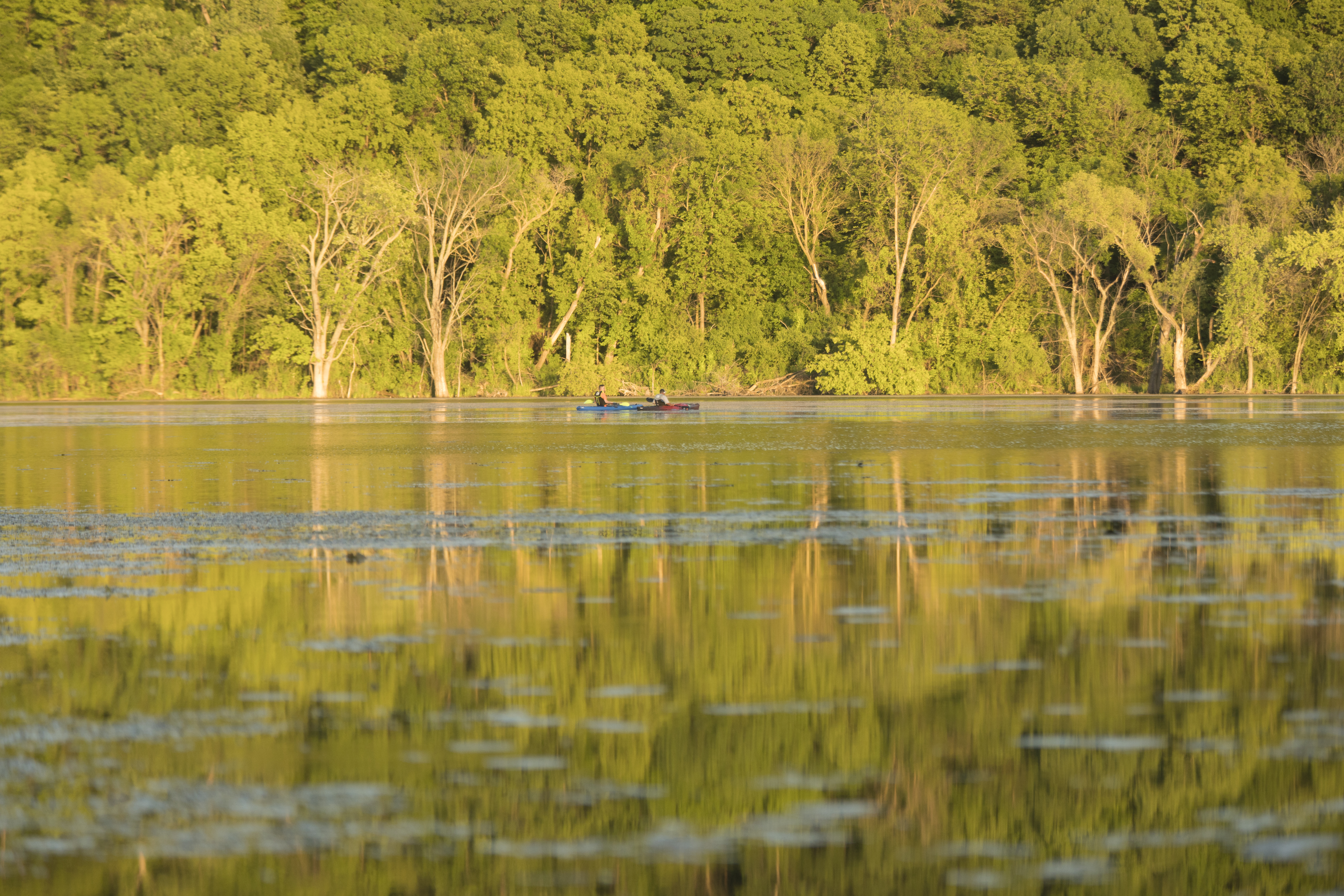 Pickerel Lake. A canoe appears in the lake with two passengers, and reflections of trees appear in the lake. Photographer Chris Juhn.