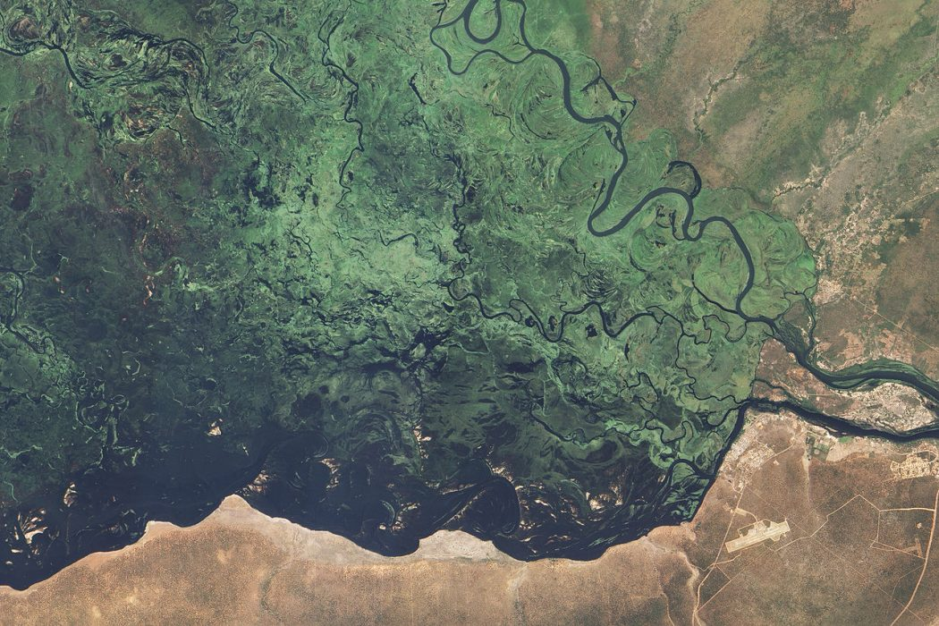 highly detailed true-color image shows the stark eastern edge of the Zambezi floodplain. To the left of the edge, water covers everything. Deep blue channels wind among green, shallowly flooded plains. To the right of the edge, the land is dry. The city of Kasane is perched confidently along the edge of the flood plain.