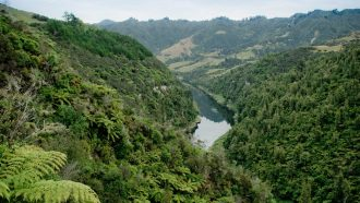 The Whanganui River, seen here, is now a person under New Zealand law. Photographer Alex Indigo, via Flickr, CC BY-ND.