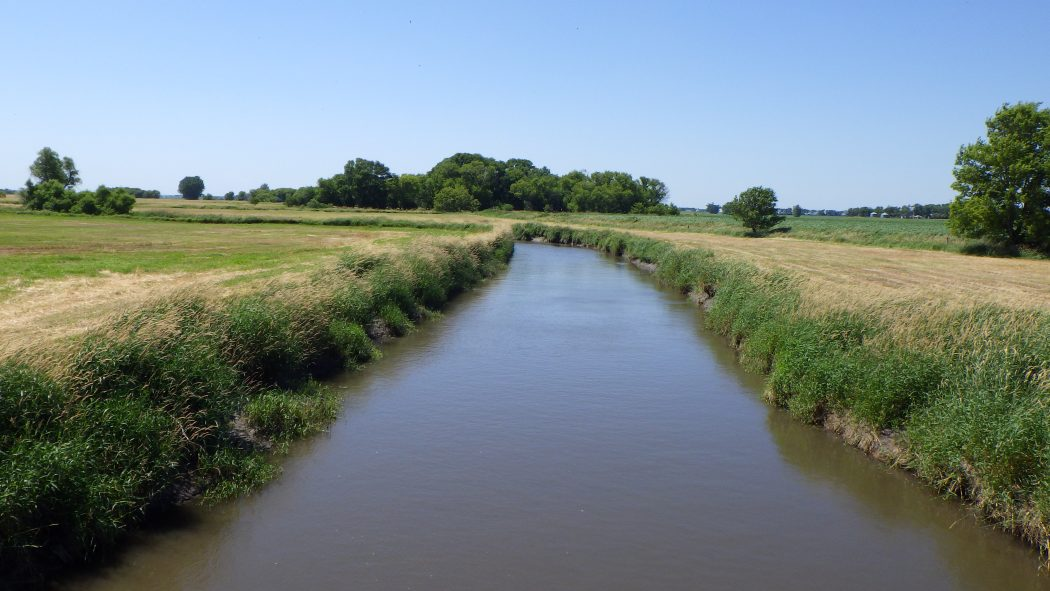 Field work in the Minnesota basin differed from that of the St. Croix. The rivers were murkier and often lined by agricultural land. Image courtesy of Mark Hove.