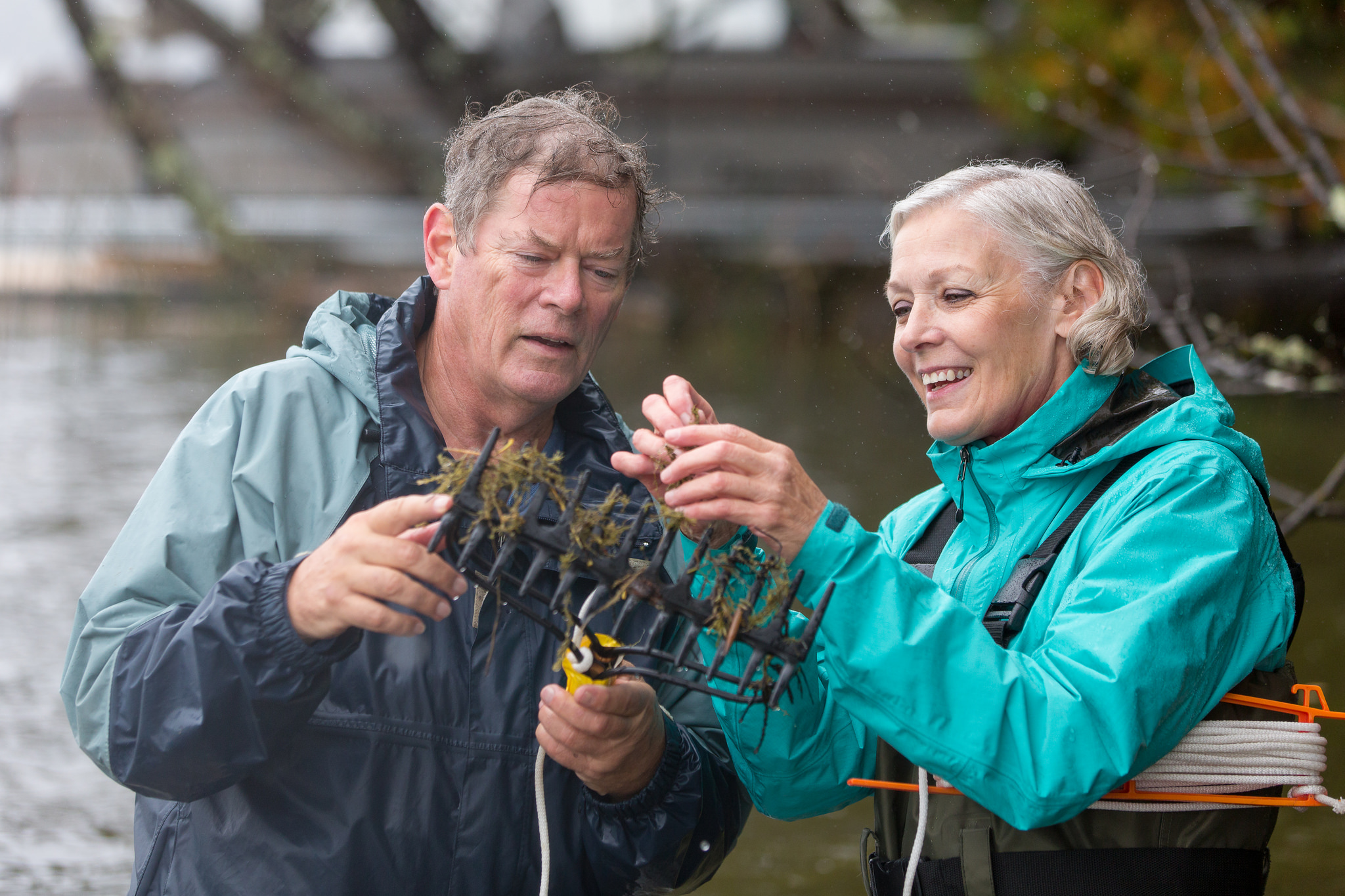 AIS Detectors. Two researchers examine plant material that has been scooped up on a rake-like device.