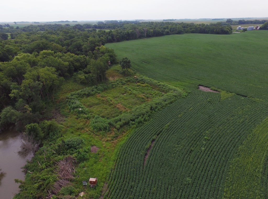 A three-cell treatment wetland on a Martin county farm removes nitrogen and phosphorus from tile drainage before it flows into Elm Creek.