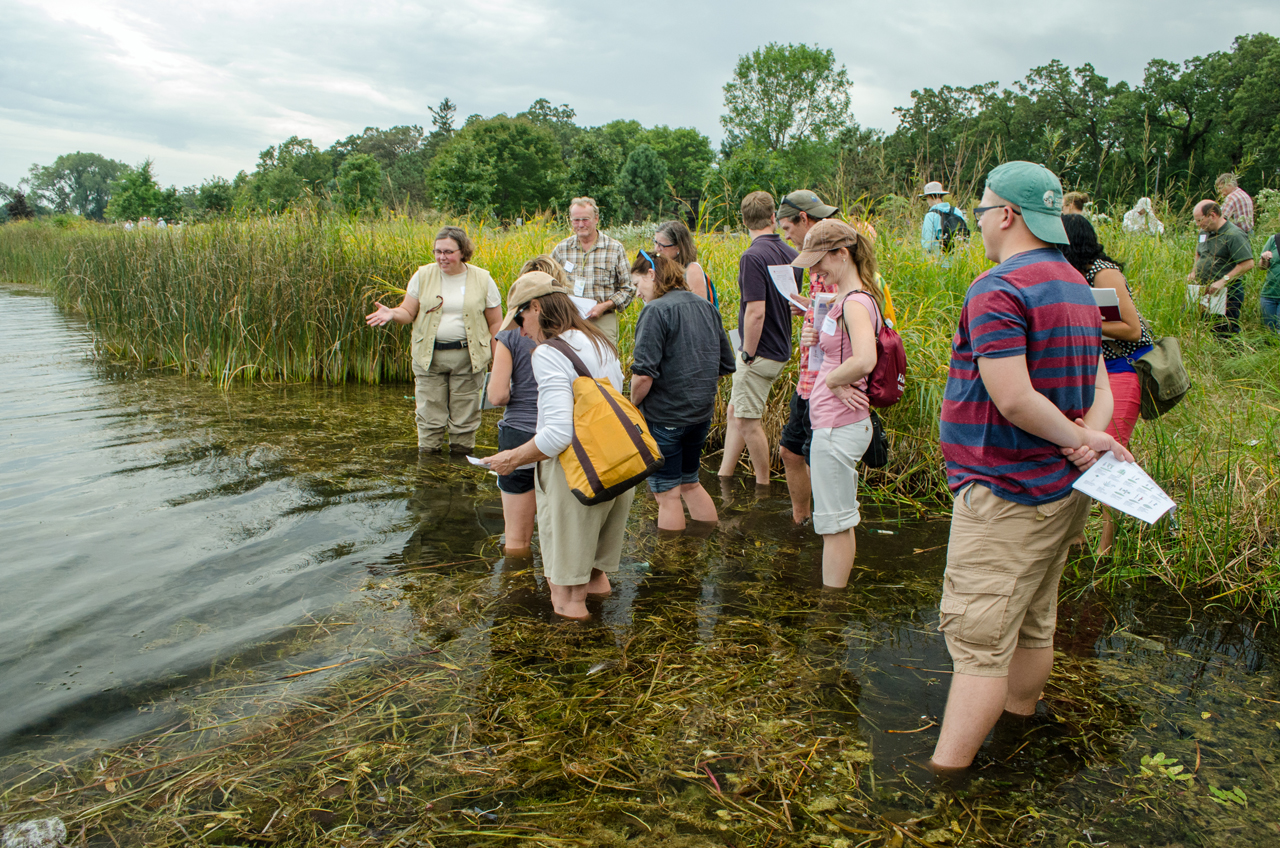 Sue Galatowitsch, head of the Department of Fisheries, Wildlife, and Conservation Biology and MAISRC researcher, leads an aquatic plant identification course at the annual AIS Research and Management Showcase.