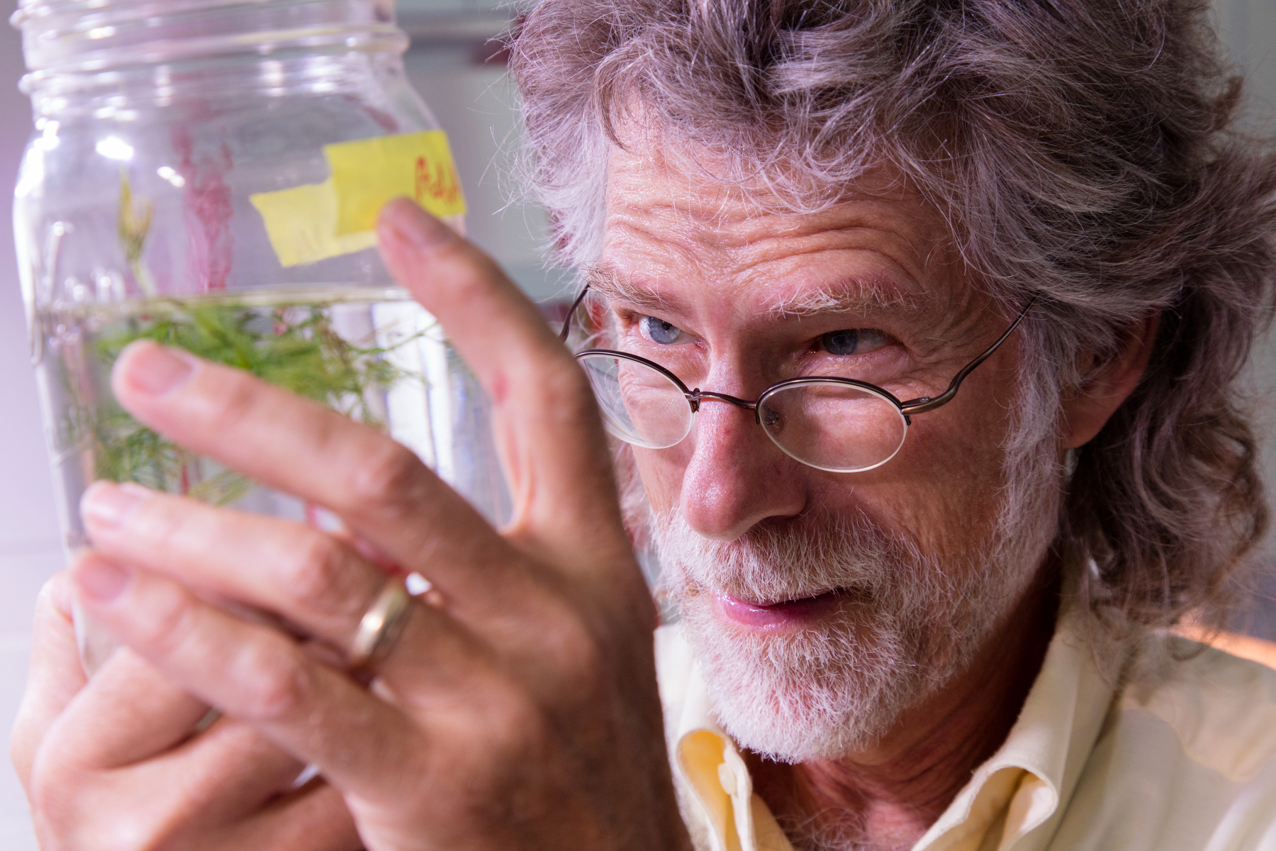 MAISRC researcher Ray Newman holds a jar of invasive plants.