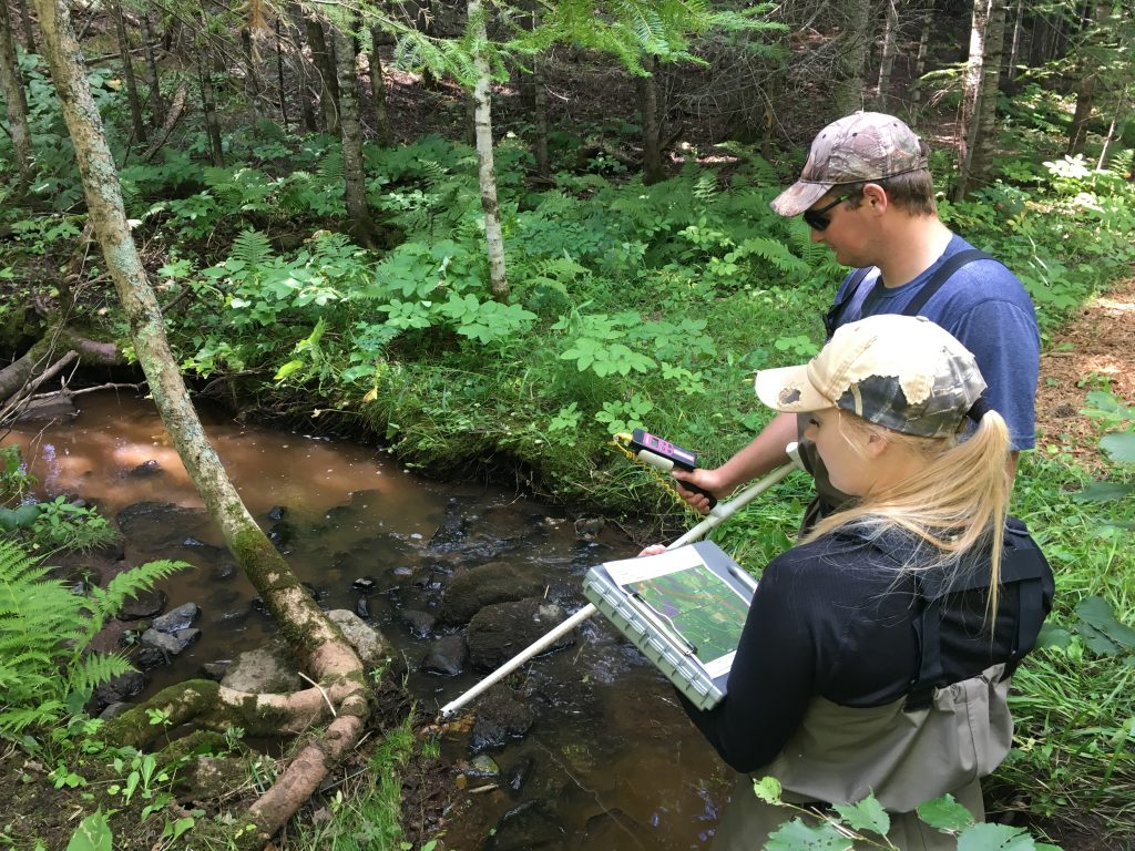 NRRI Field Technicians Nick Pierce and Kari Hansen walk through rural streams to get temperature readings, documenting where cool water inputs might make them more resilient against climate change impacts.