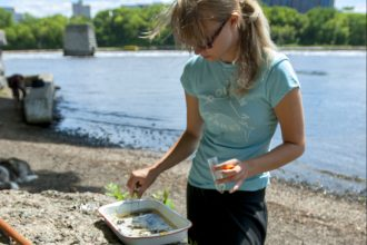 A woman collects a water sample near the Mississippi river.