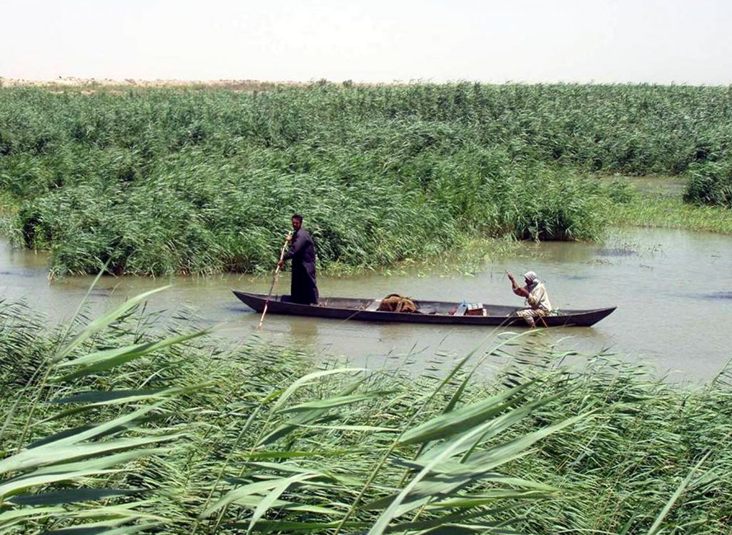 Marsh Arabs poling a traditional mashoof in the marshes of southern Iraq. Photographer Hassan Janali, U.S. Army Corps of Engineers.