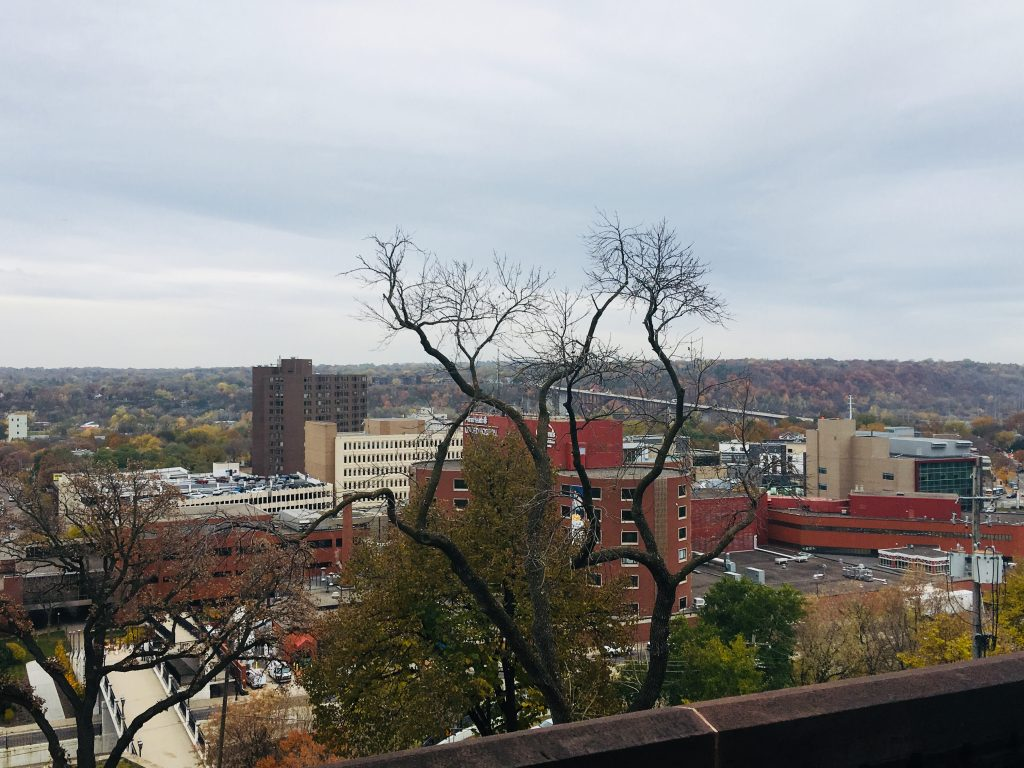 The view of St. Paul and the Mississippi River from the Hill House, present day. The old St. Paul levees are now home to a museum, a hospital complex, parks, housing developments, and people on the river for recreation. Image courtesy of Christine Herbaly.
