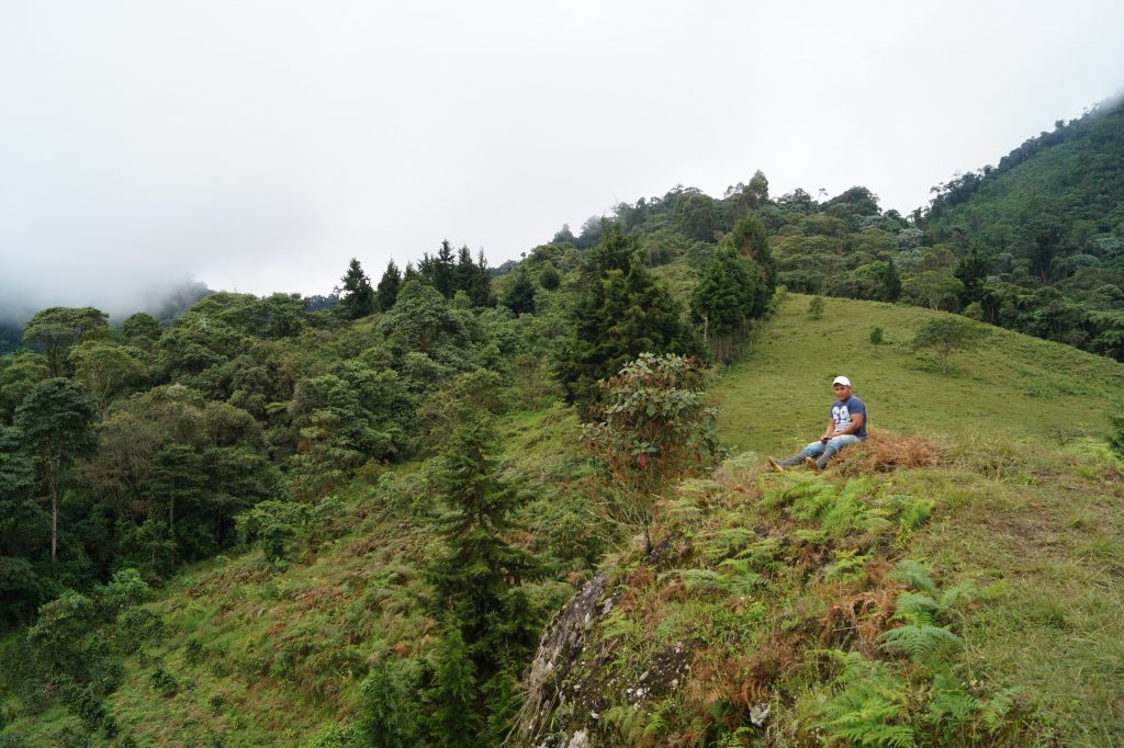 One of the members of the Kwet Wala Indigenous community sits on top of the community's sacred place as he show us the forests and water source area that the community helps to protect. Image courtesy of Kelly Meza Prado.