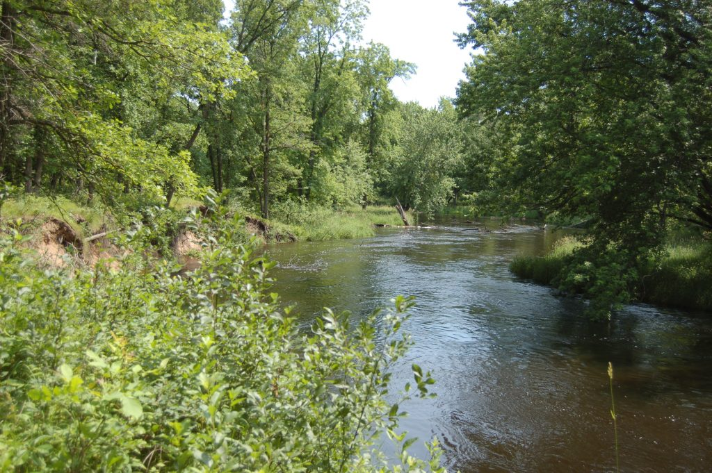 Figure 1. Photo of the Leaf River from the Réaume's Leaf River archaeological site.