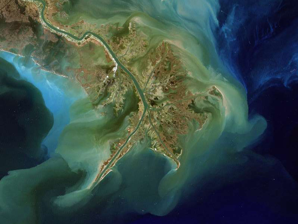 Seen from above, the Mississippi River carries sediment into the Gulf of Mexico. That sediment often contains pollutants from fertilizers that cause a spike in algal blooms.