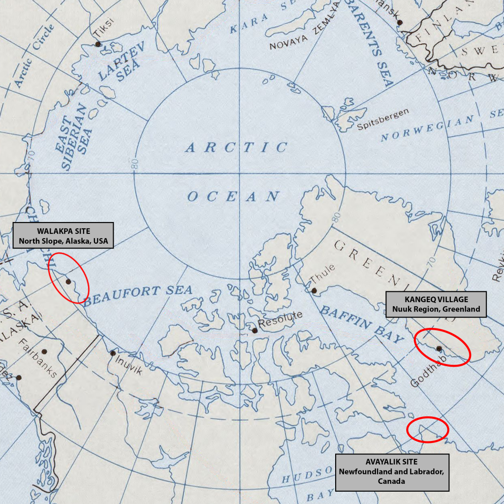 This map shows the regions of the three Arctic research sites highlighted in this piece: the Walakpa site in Alaska, the Avayalik site in Newfoundland, and the Kangeq village in Greenland.