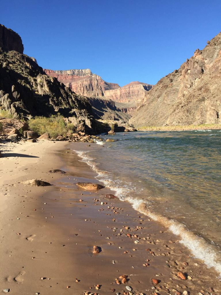 The Colorado River is lapping against a yellow sandy shore, with desert hills receding to cliffs in the background.