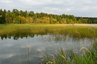 Lake Itasca. Image courtesy of Sara Černe.