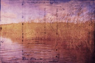 Wild rice and the 1833 Survey of Menominee's Reservation. Image by Elan Pochedley.
