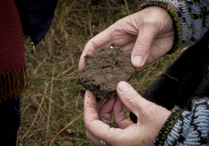 Climate Land Leaders are learning that soil health is needed for healthy waters. Image courtesy of Sharing Our Roots.