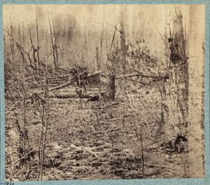 "William Bell(?), Battle-field of the ""Wilderness"" Views in the woods in the Federal Lines on north side of Orange Plank Road, 1866. Albumen print. (Library of Congress, Prints and Photographs Division, Washington, DC, LC-DIG-ppmsca-23672.)"