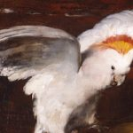 Exanimate Subjects: Taxidermy in the Artist's Studio